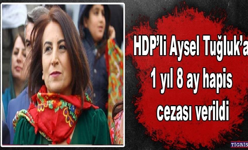 MAHKEME HDP'Lİ AYSEL TUĞLUK'A 1 YIL 8 AY CEZASI VERDİ